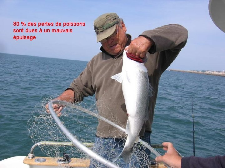 80 % des pertes de poissons sont dues à un mauvais épuisage