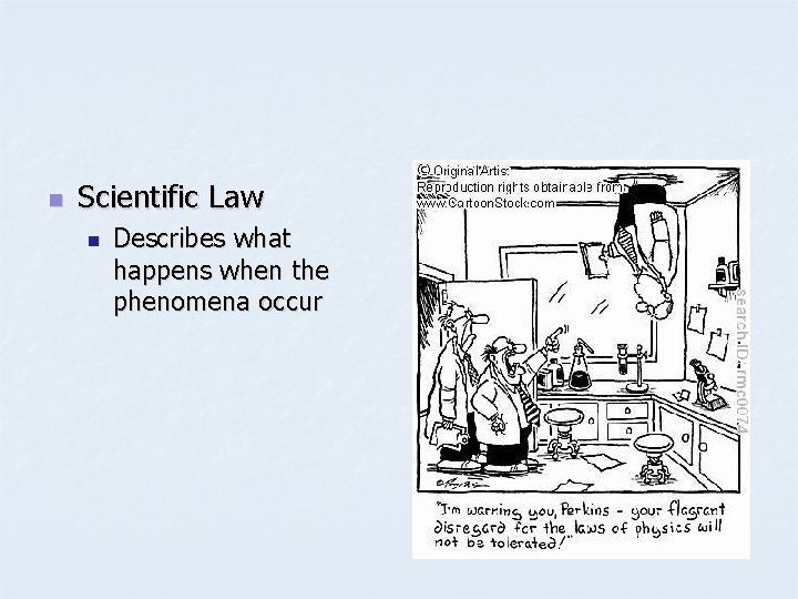 n Scientific Law n Describes what happens when the phenomena occur