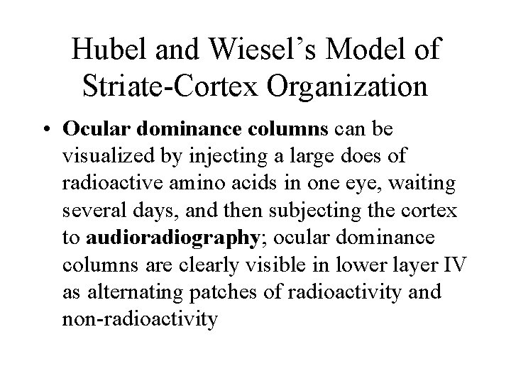 Hubel and Wiesel's Model of Striate-Cortex Organization • Ocular dominance columns can be visualized