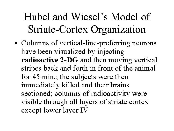 Hubel and Wiesel's Model of Striate-Cortex Organization • Columns of vertical-line-preferring neurons have been