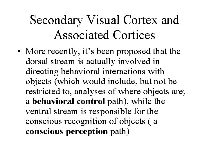 Secondary Visual Cortex and Associated Cortices • More recently, it's been proposed that the