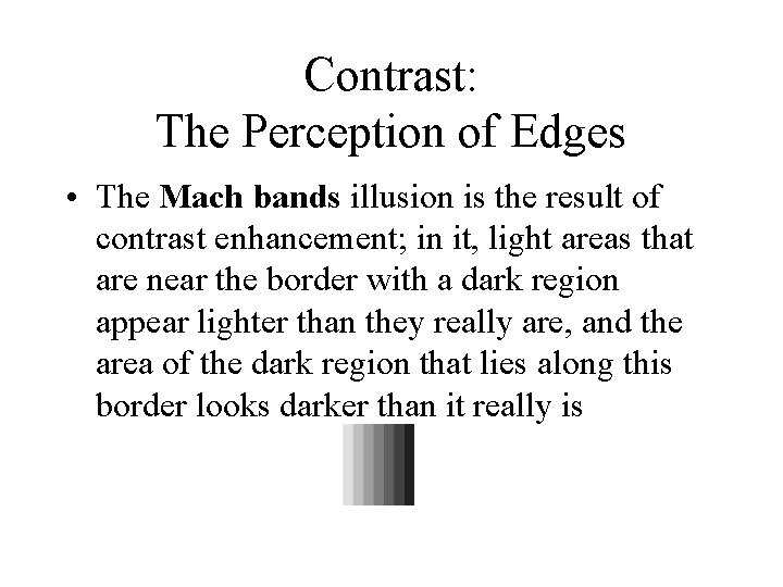 Contrast: The Perception of Edges • The Mach bands illusion is the result of