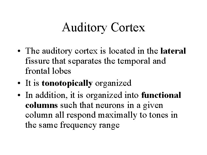 Auditory Cortex • The auditory cortex is located in the lateral fissure that separates