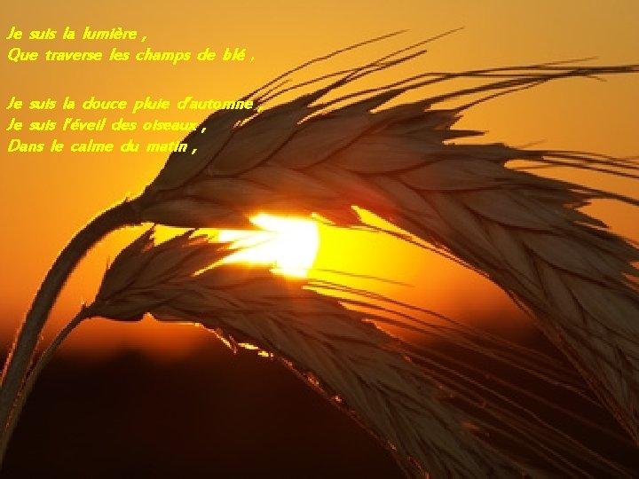 Je suis la lumière , Que traverse les champs de blé , Je suis