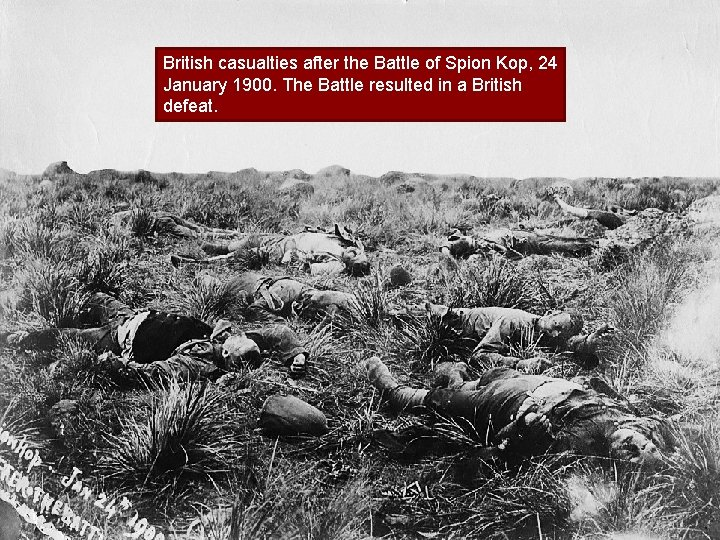 British casualties after the Battle of Spion Kop, 24 January 1900. The Battle resulted