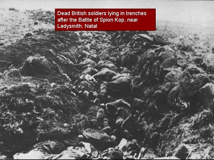 Dead British soldiers lying in trenches after the Battle of Spion Kop, near Ladysmith,