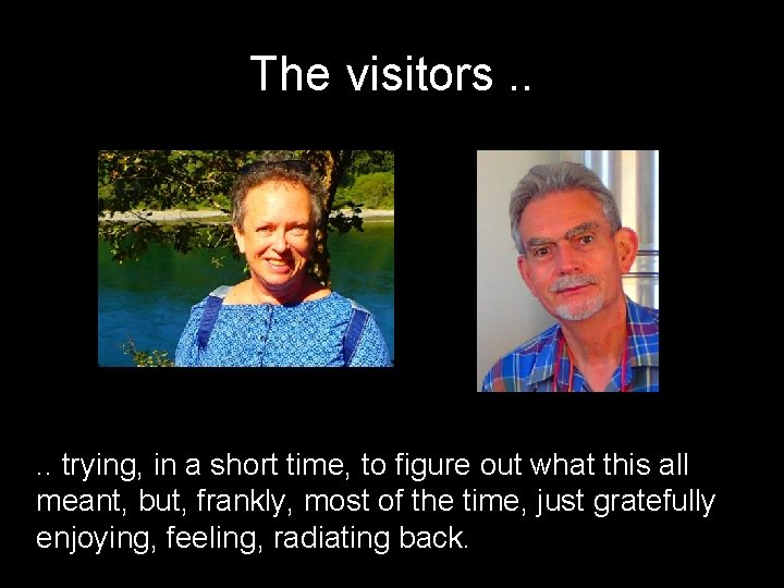 The visitors. . trying, in a short time, to figure out what this all