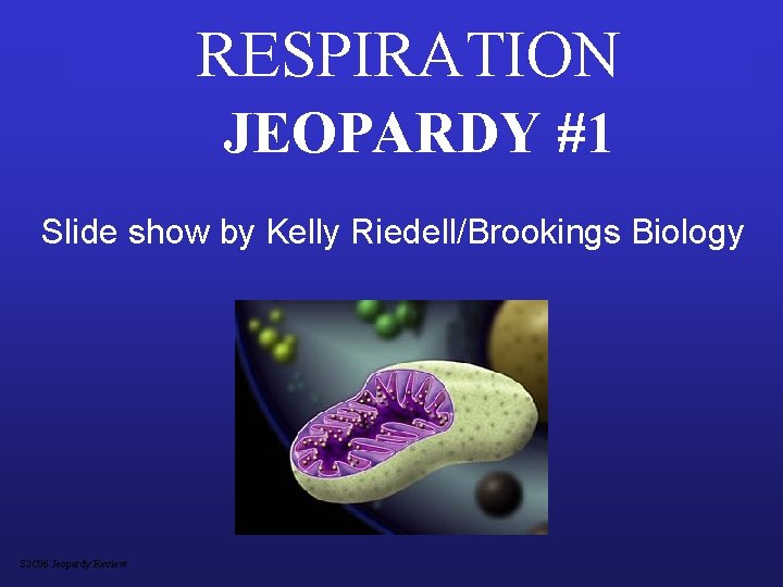 RESPIRATION JEOPARDY #1 Slide show by Kelly Riedell/Brookings Biology S 2 C 06 Jeopardy