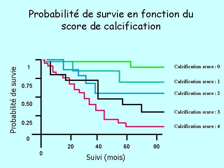 Probabilité de survie en fonction du score de calcification Calcification score : 0 1