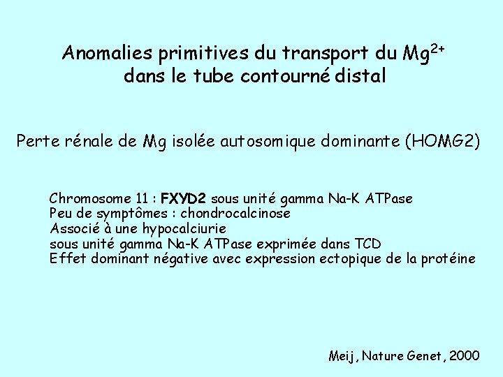 Anomalies primitives du transport du Mg 2+ dans le tube contourné distal Perte rénale