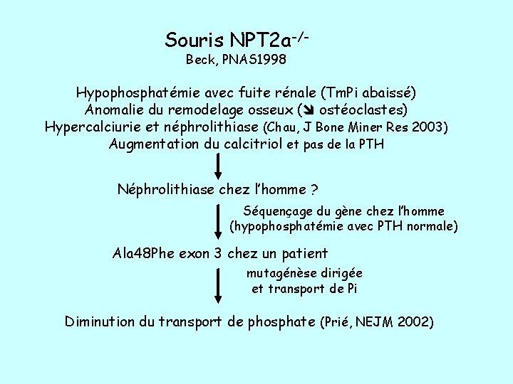 Souris NPT 2 a-/Beck, PNAS 1998 Hypophosphatémie avec fuite rénale (Tm. Pi abaissé) Anomalie