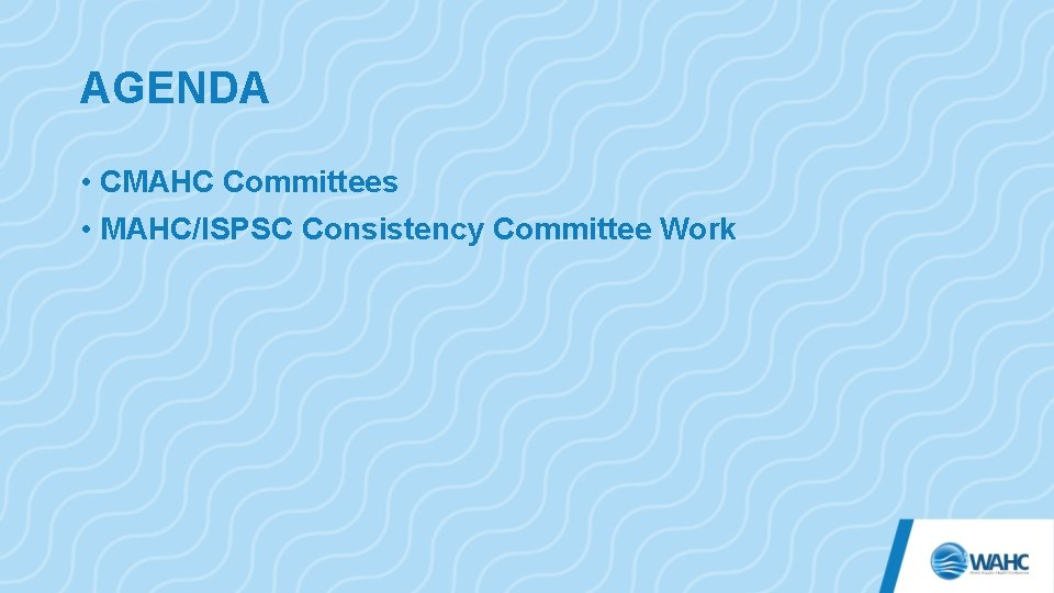 AGENDA • CMAHC Committees • MAHC/ISPSC Consistency Committee Work