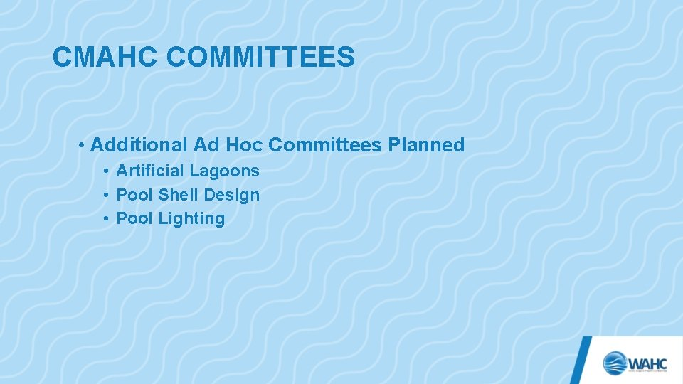 CMAHC COMMITTEES • Additional Ad Hoc Committees Planned • Artificial Lagoons • Pool Shell