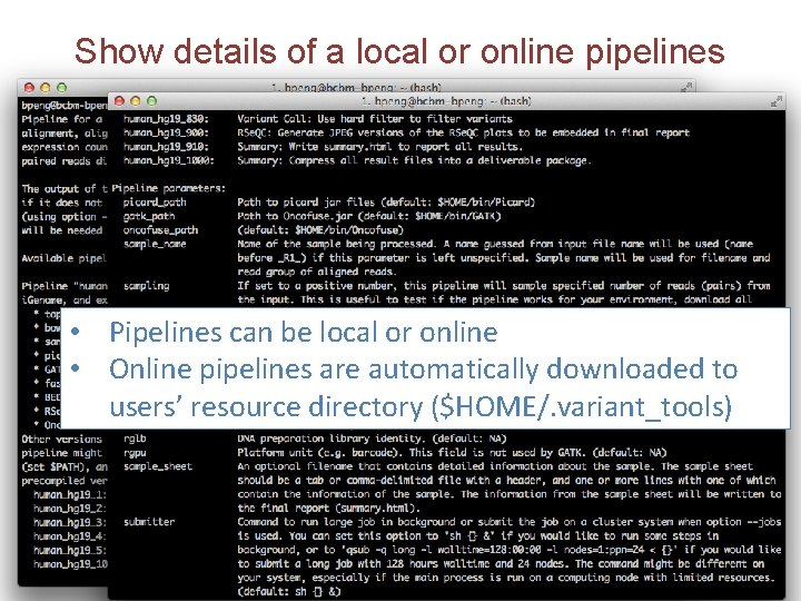 Show details of a local or online pipelines • Pipelines can be local or