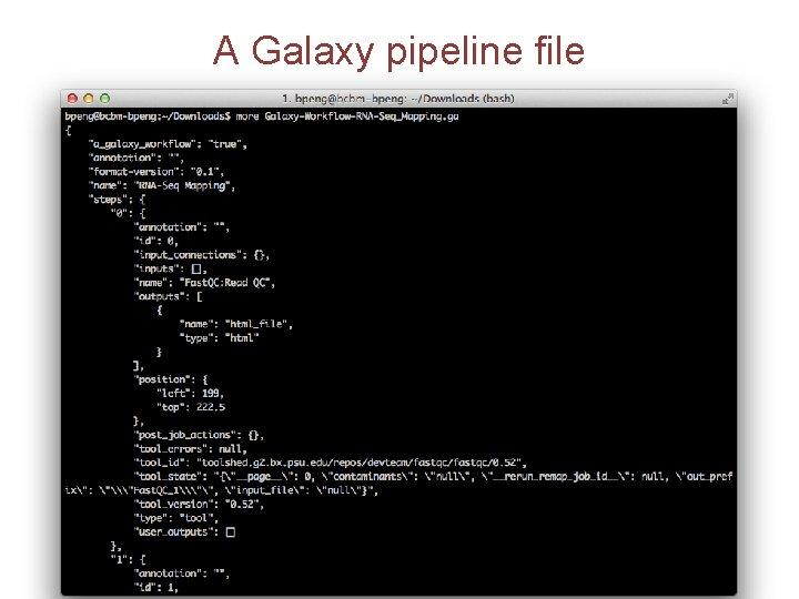 A Galaxy pipeline file