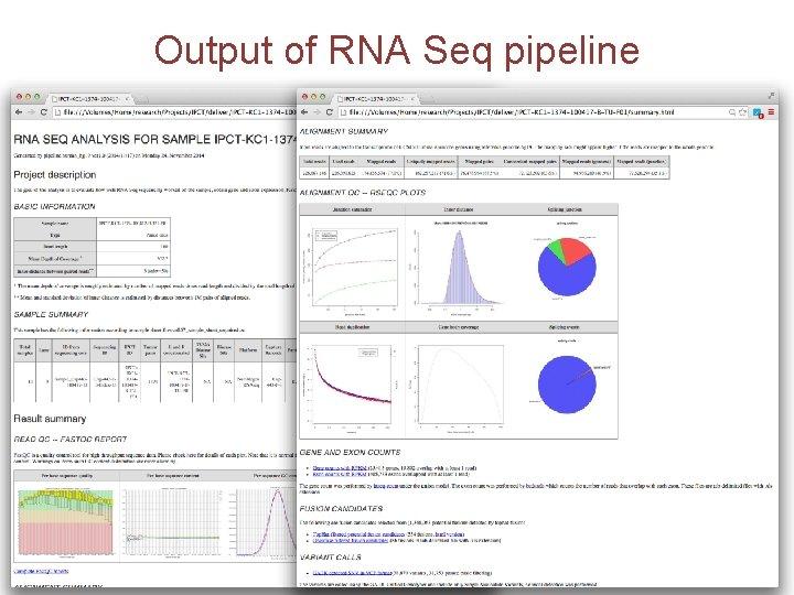 Output of RNA Seq pipeline