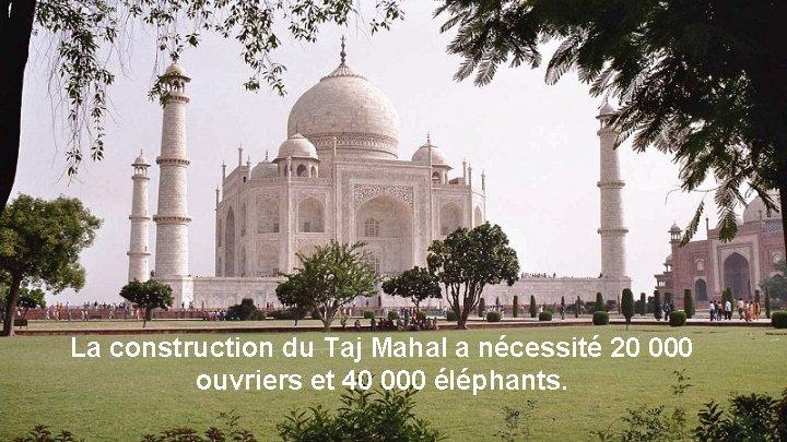 La construction du Taj Mahal a nécessité 20 000 ouvriers et 40 000 éléphants.