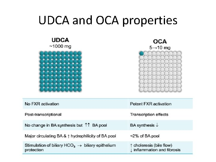 UDCA and OCA properties