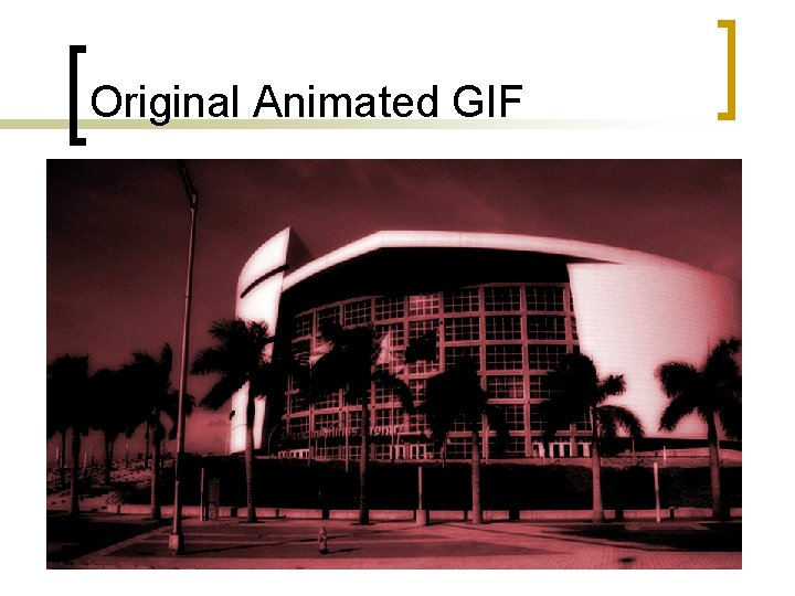 Original Animated GIF