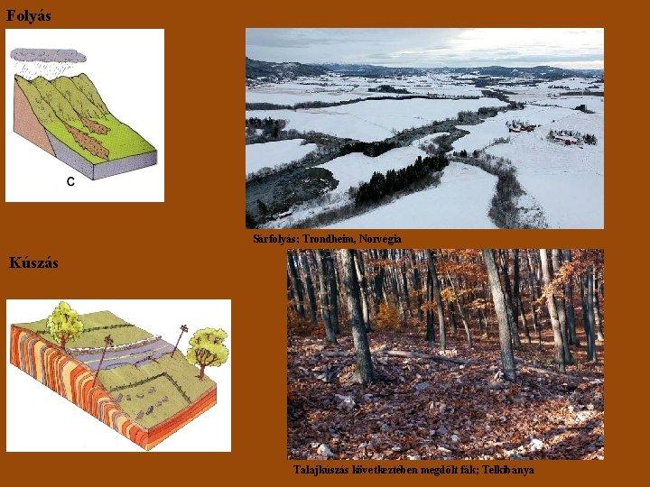Folyás Sárfolyás; Trondheim, Norvégia Kúszás Talajkúszás következtében megdőlt fák; Telkibánya