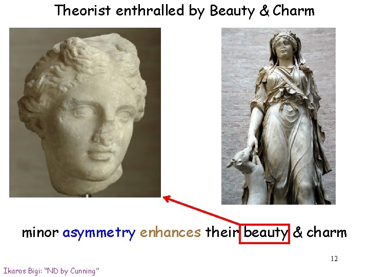 Theorist enthralled by Beauty & Charm minor asymmetry enhances their beauty & charm 12