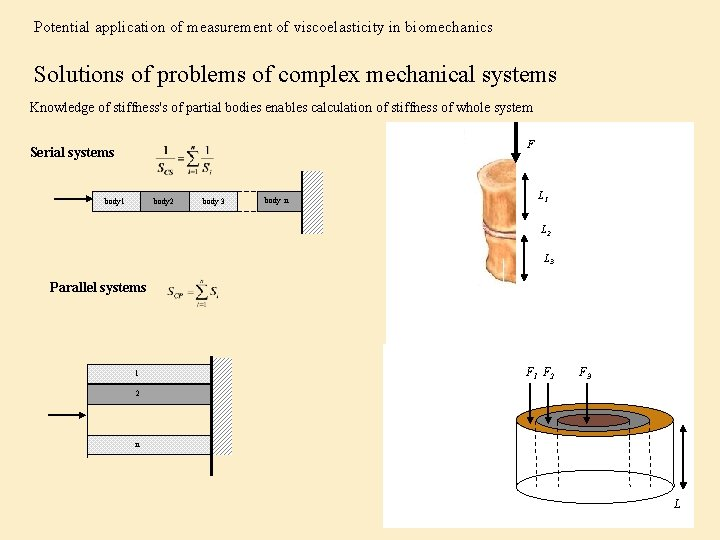 Potential application of measurement of viscoelasticity in biomechanics Solutions of problems of complex mechanical