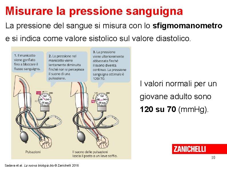 Misurare la pressione sanguigna La pressione del sangue si misura con lo sfigmomanometro e