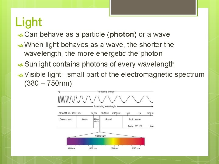 Light Can behave as a particle (photon) or a wave When light behaves as