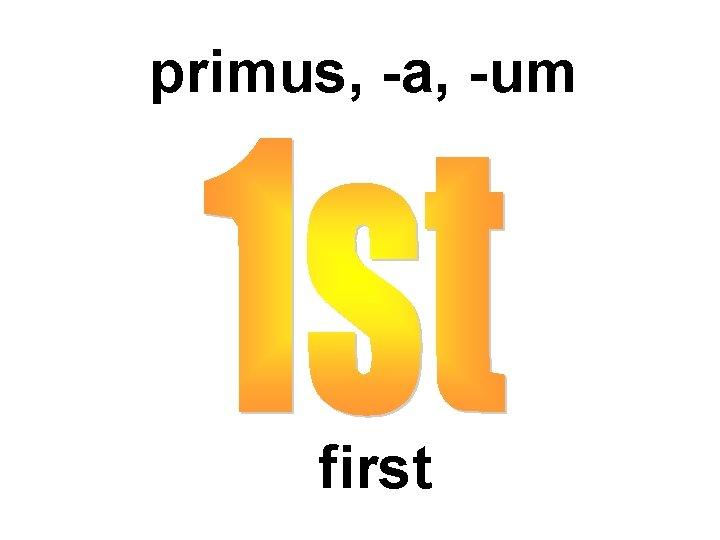 primus, -a, -um first