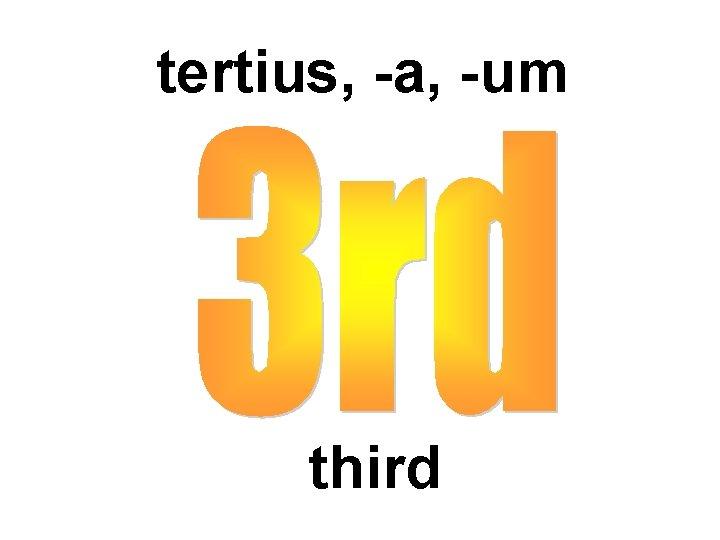 tertius, -a, -um third