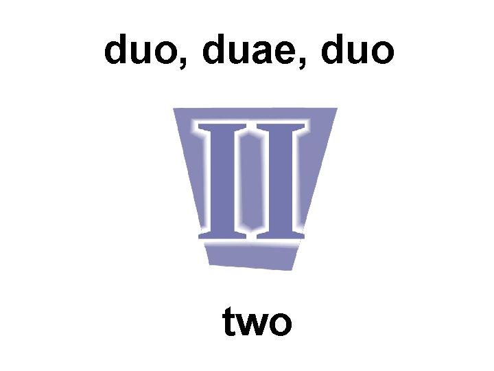 duo, duae, duo two