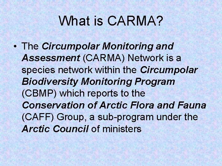 What is CARMA? • The Circumpolar Monitoring and Assessment (CARMA) Network is a species