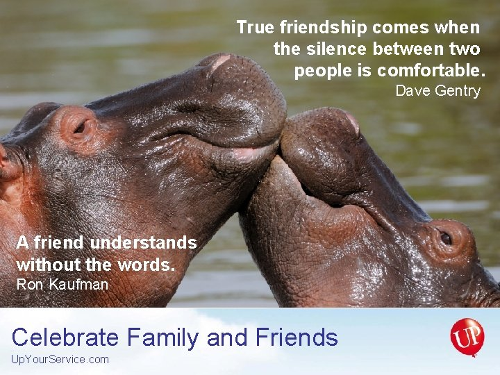 True friendship comes when the silence between two people is comfortable. Dave Gentry A