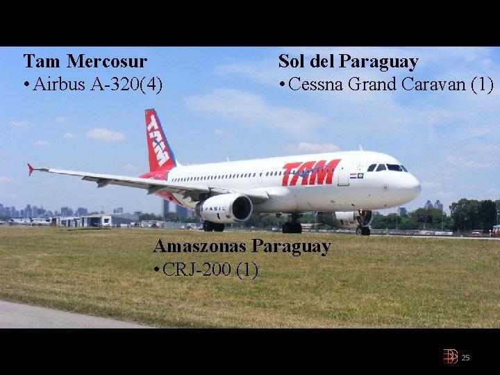 Tam Mercosur • Airbus A-320(4) Sol del Paraguay • Cessna Grand Caravan (1) Amaszonas
