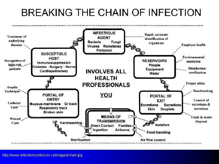 http: //www. infectioncontrol. on. ca/images/chart. jpg