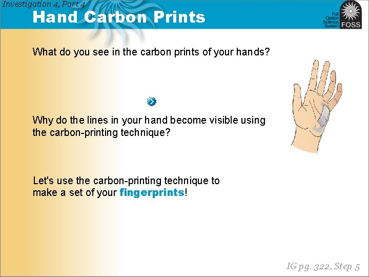 Investigation 4, Part 4 Hand Carbon Prints What do you see in the carbon