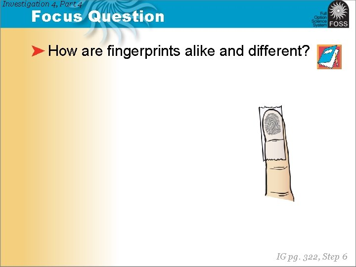 Investigation 4, Part 4 Focus Question How are fingerprints alike and different? IG pg.
