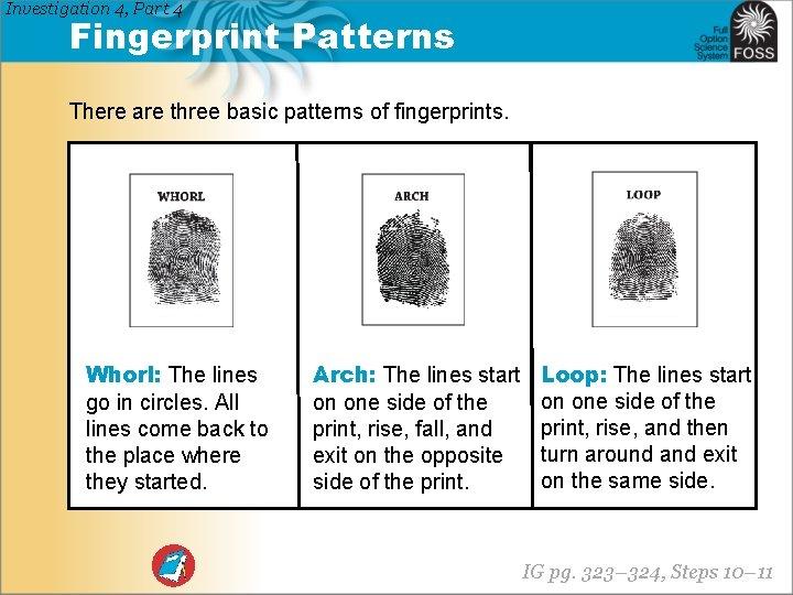 Investigation 4, Part 4 Fingerprint Patterns There are three basic patterns of fingerprints. Whorl: