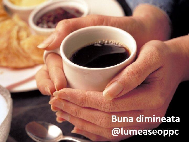 Buna dimineata @lumeaseoppc