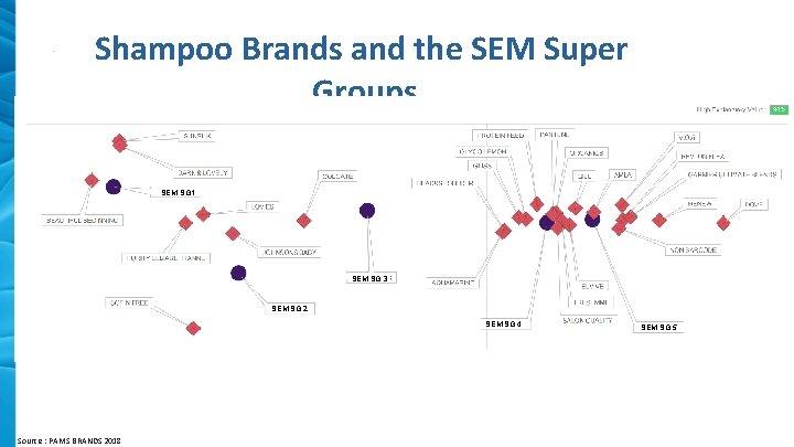 Shampoo Brands and the SEM Super Groups SEM SG 1 SEM SG 3 SEM