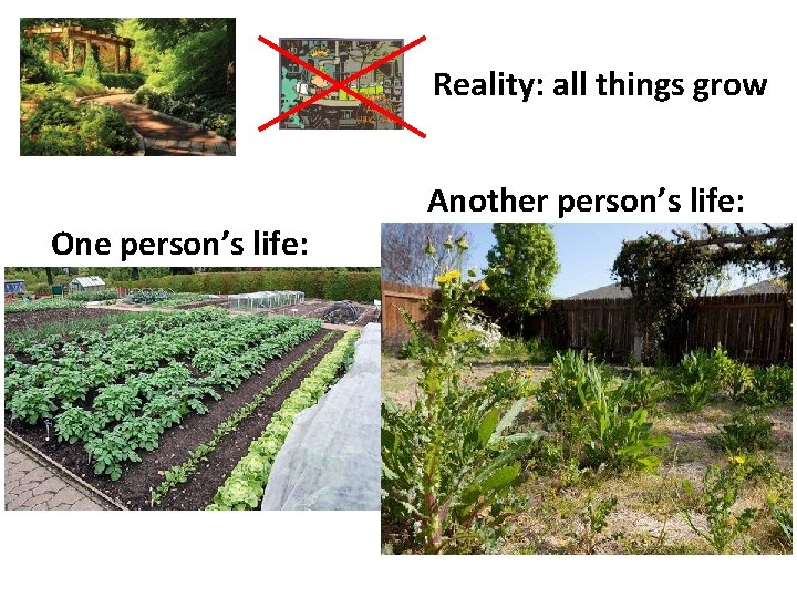 Reality: all things grow Another person's life: One person's life: