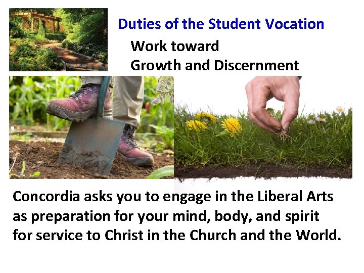 Duties of the Student Vocation Work toward Growth and Discernment Concordia asks you to
