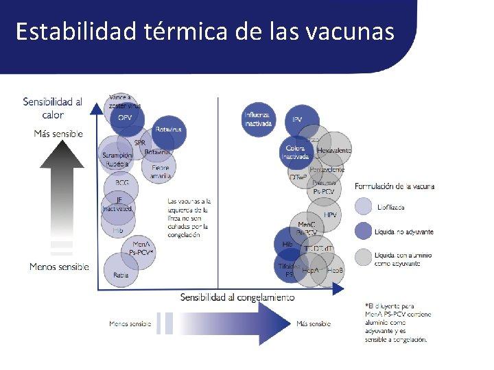 Estabilidad térmica de las vacunas