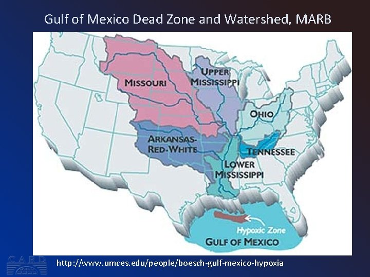 Gulf of Mexico Dead Zone and Watershed, MARB http: //www. umces. edu/people/boesch-gulf-mexico-hypoxia