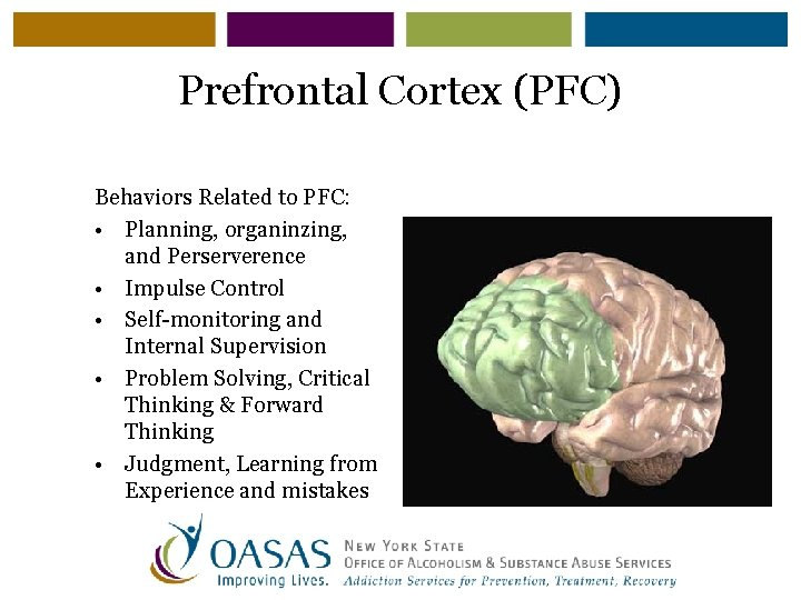 Prefrontal Cortex (PFC) Behaviors Related to PFC: • Planning, organinzing, and Perserverence • Impulse