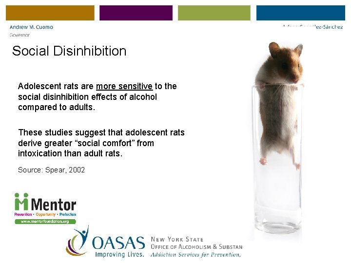 Social Disinhibition Adolescent rats are more sensitive to the social disinhibition effects of alcohol