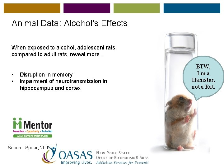 Animal Data: Alcohol's Effects When exposed to alcohol, adolescent rats, compared to adult rats,