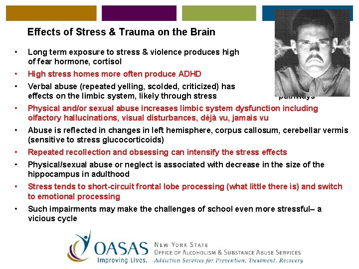 Effects of Stress & Trauma on the Brain • Long term exposure to stress
