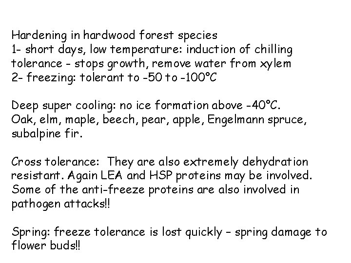 Hardening in hardwood forest species 1 - short days, low temperature: induction of chilling