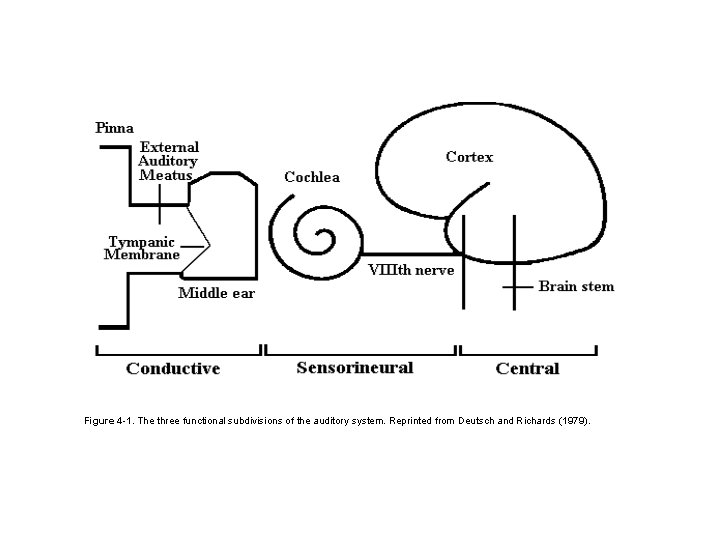Figure 4 -1. The three functional subdivisions of the auditory system. Reprinted from Deutsch